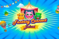 Fantasy Connect Deluxe